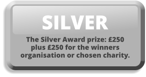 SILVER The Silver Award prize: £250 plus £250 for the winners organisation or chosen charity.