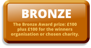 BRONZE The Bronze Award prize: £100 plus £100 for the winners organisation or chosen charity.